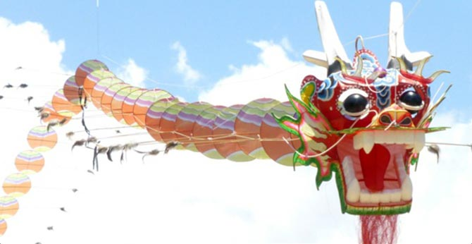 Kite Festival Dragon with tail kite