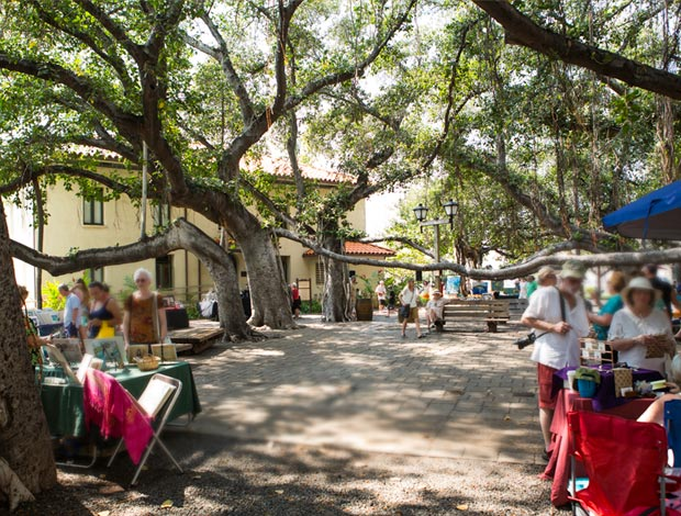 Lahaina's Gathering Place, the Banyan Tree