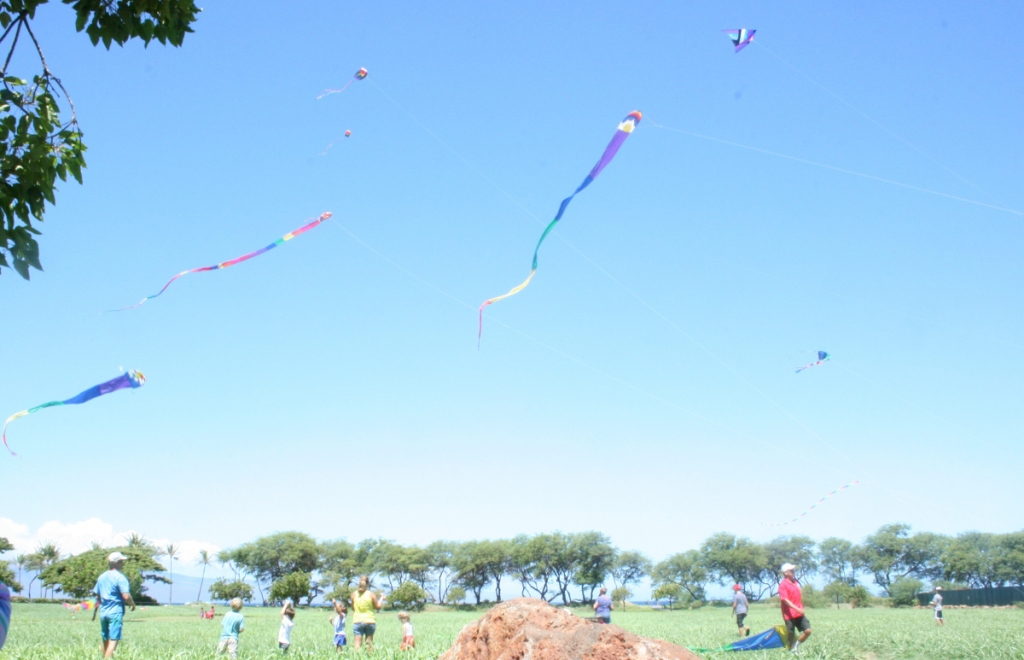 short essay on kite flying