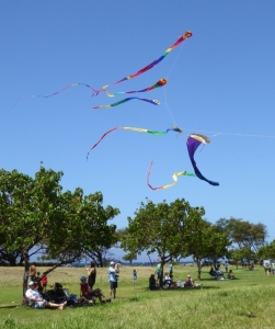 Family kite flying on Saturday