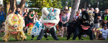Chinese New Year in Lahaina Lions