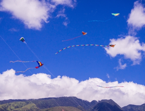 Lahaina's Chinese Kite Festival with Kite Flying Celebrates National Kite Month