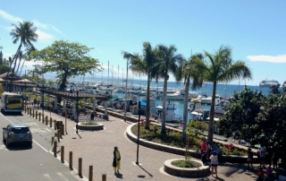 Keawaiki Park overview at Lahaina Harbor Front