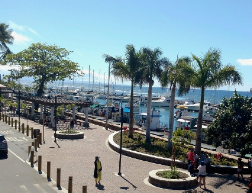 Announcing Keawaiki Park Official Opening at Lahaina Harbor Front